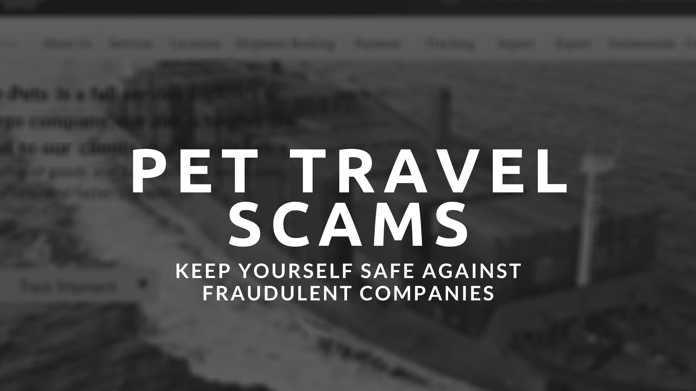 Beware of Pet Travel Scams