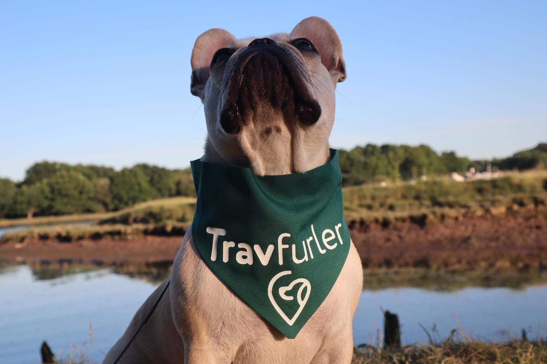Travfurler – The Pet Travel Gear You Need
